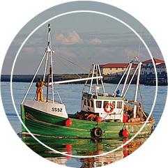 Balıkçı Kaptanlığı Eğitimi